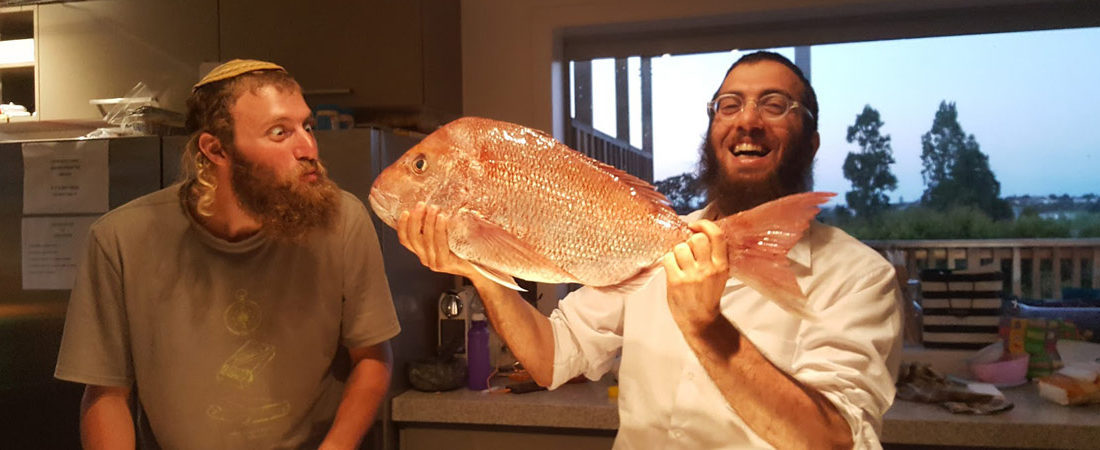 Fish-and-Rabbi